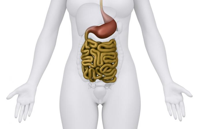 Inflammation of the gut can lead to rectal bleeding.