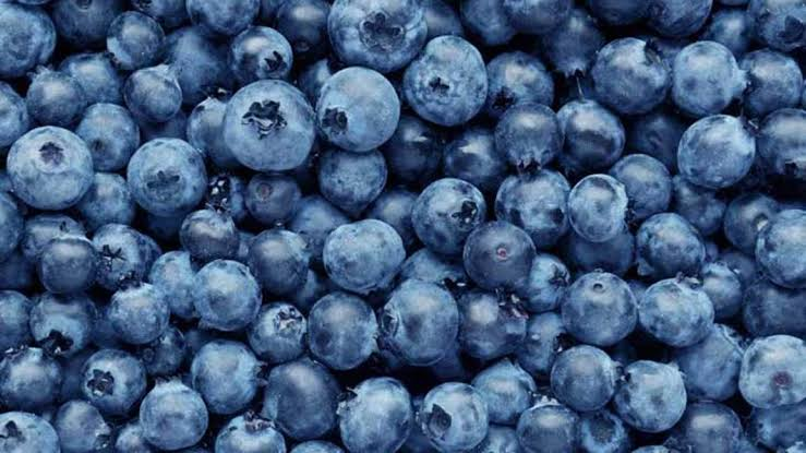 Blueberries are a healthful snack for people with CKD.