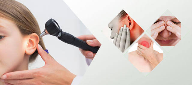 ENT doctors focus on the ear, nose, and throat.