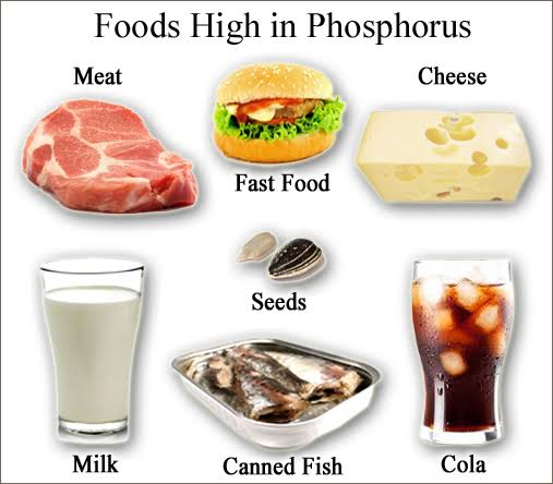Foods high in phosphorus include seafood, chicken, and seeds.